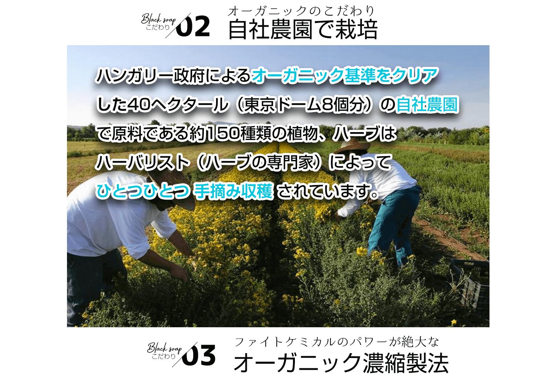 こだわりその2。自社農園でオーガニック栽培された厳選された植物原料